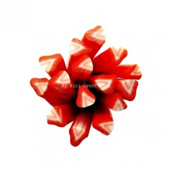 Cane fraise